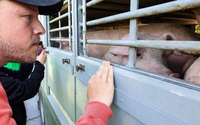 Q&A: Casper Hilt, Full-time Animal Activist
