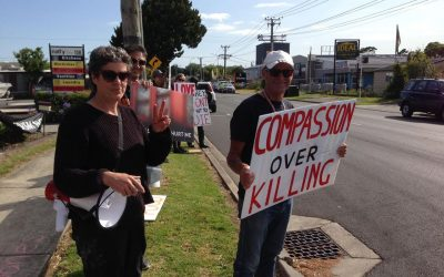 Vigil at Chicken Slaughterhouse, Auckland, NZ,  17 January 2020