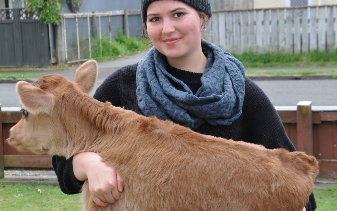 Dairying violates 'The Five Freedoms'