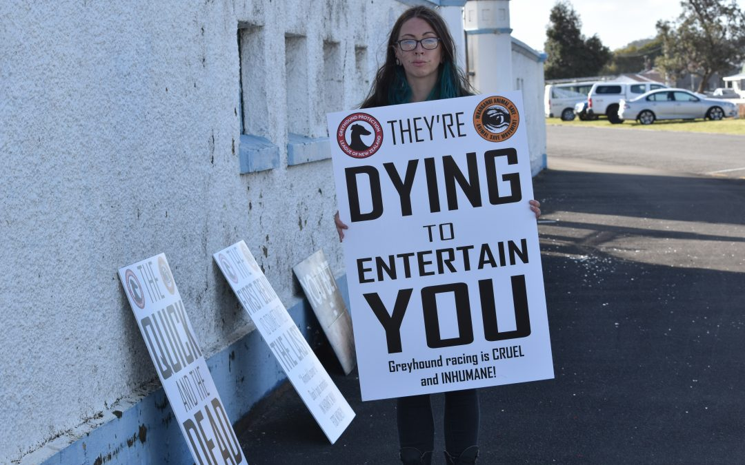 STANDING UP FOR GREYHOUNDS – New Zealand's First Trackside Greyhound Racing Protest